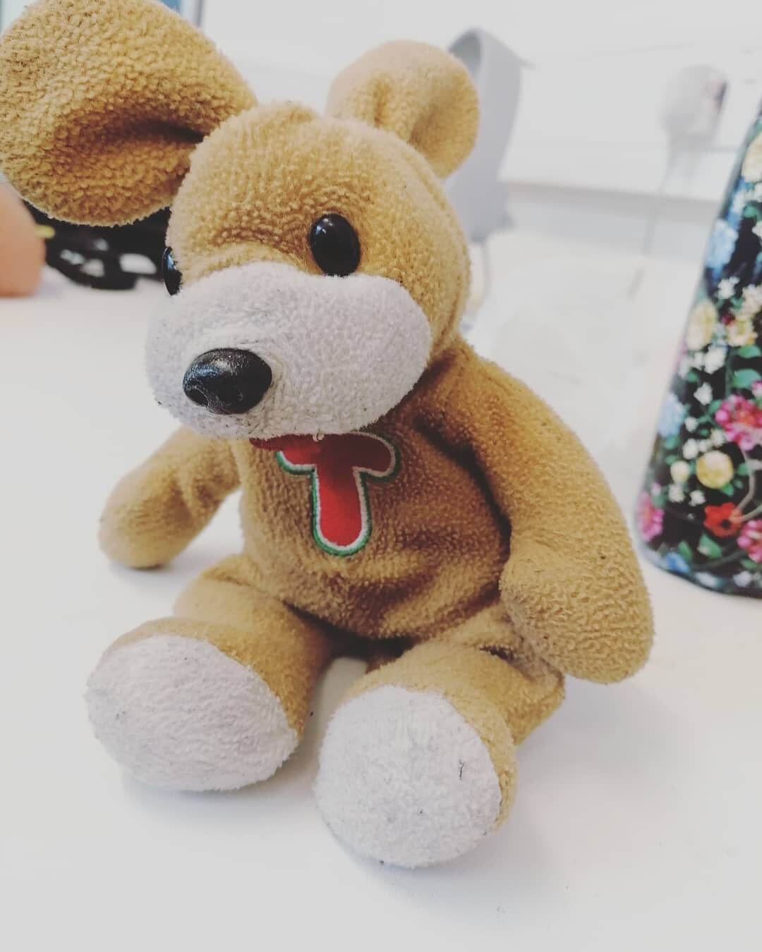 Lost teddy found on Foundry Street.  Swing by if yours or get in contact. We will be sure to look after them until then 😊  Feel free to share to help it find its owner